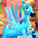 game Rainbow Dash and the New Born Baby